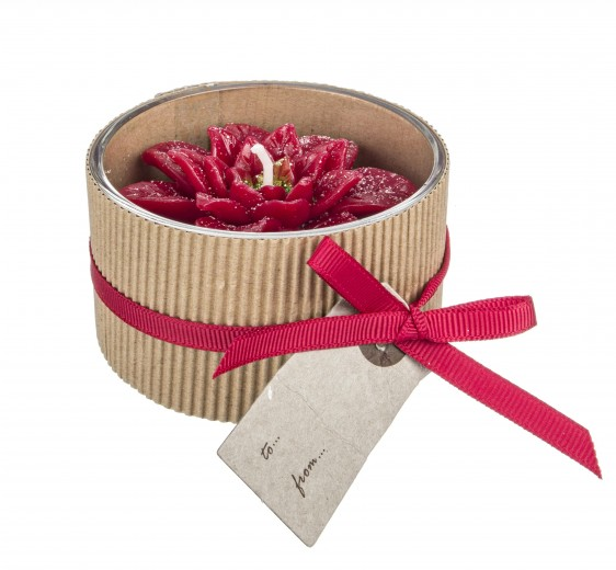 Lumanare parfumata Poinsettia Rosu, Ø7,5xH5 cm
