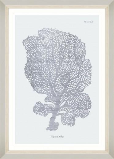 Tablou Framed Art Silver Coral I