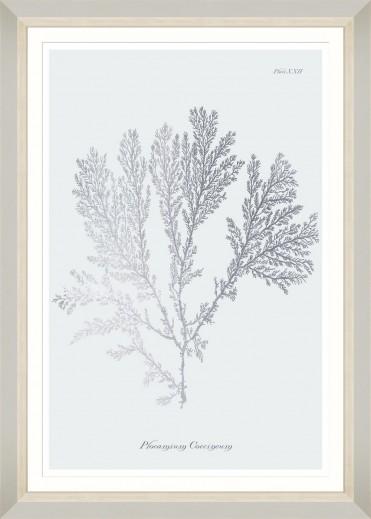 Tablou Framed Art Silver Coral II