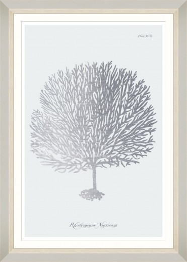 Tablou Framed Art Silver Coral III
