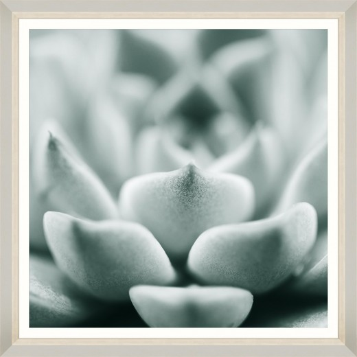 Tablou Framed Art Succulent III