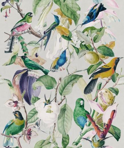 Set 3 role Tapet Imprimat Digital Tropical Birds