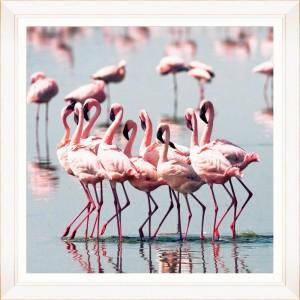 Tablou Framed Art Flamingo Flock