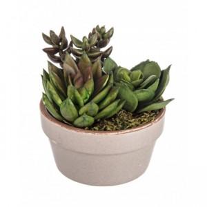 Planta artificiala Texas, H10 cm