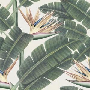 Set 3 role Tapet Imprimat Digital Tropical Bloom