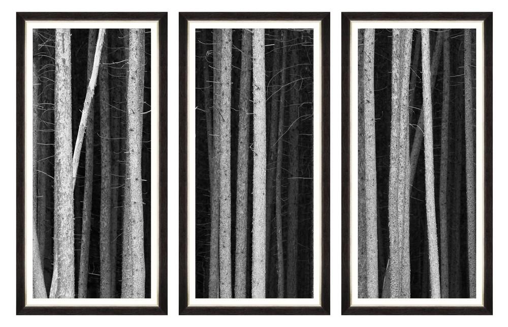 Tablou 3 piese Framed Art Dark Mood