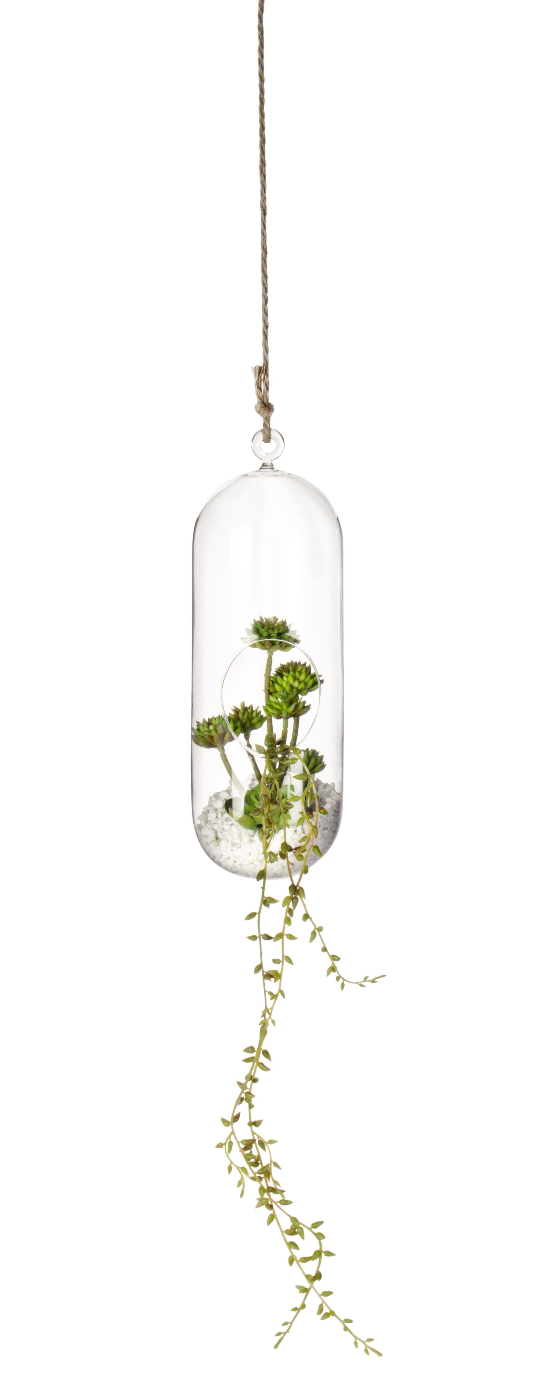 Decoratiune suspendabila din sticla, cu plante Bubble High Transparent / Verde, Ø12,6xH31 cm imagine