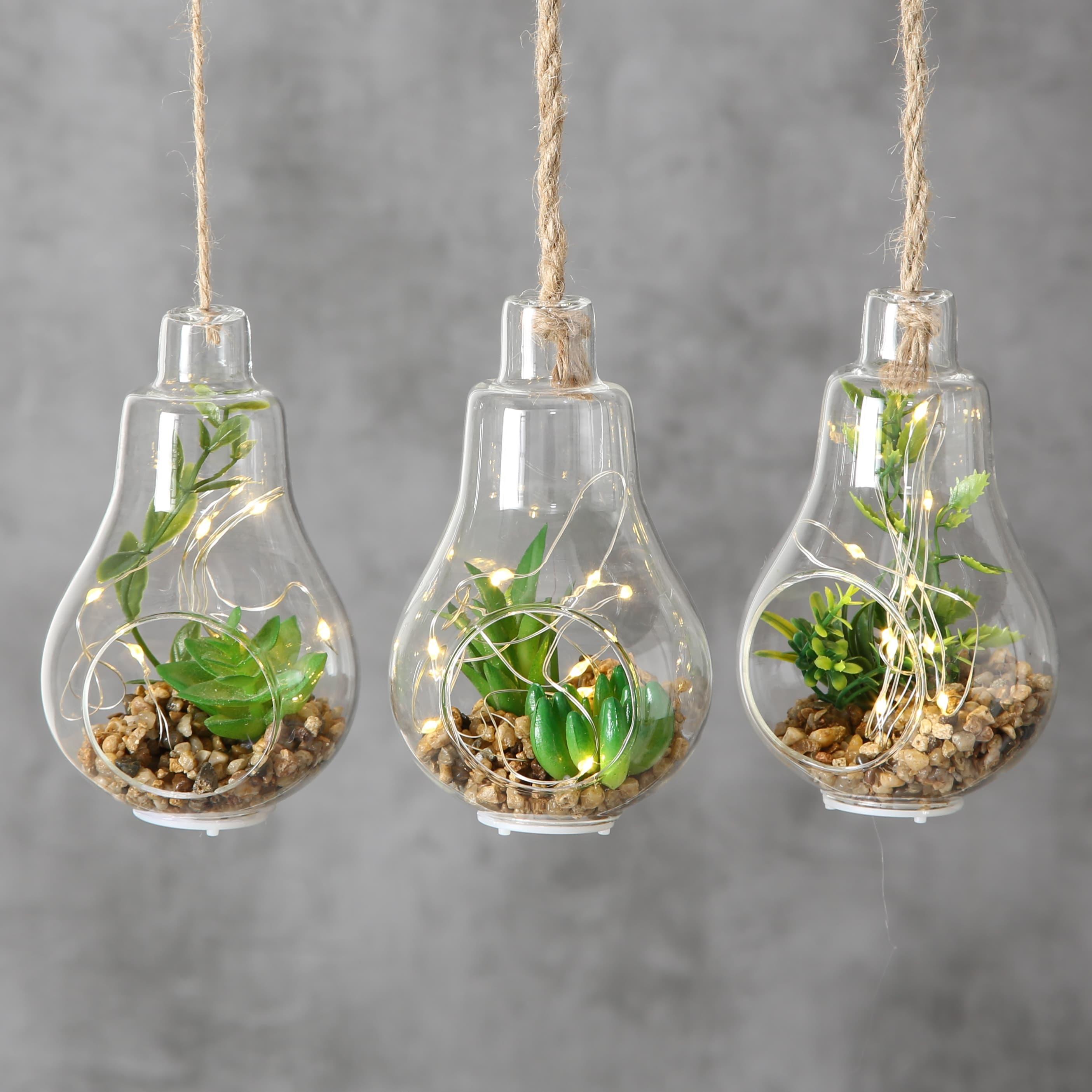 Decoratiune suspendabila din sticla, cu plante si LED Earth Verde, Modele Asortate, H12 cm imagine