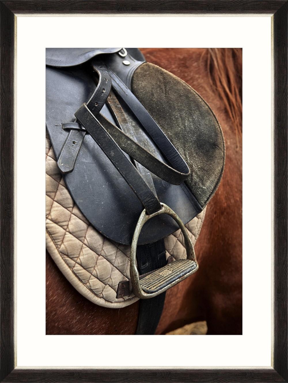 Tablou Framed Art Equitation I
