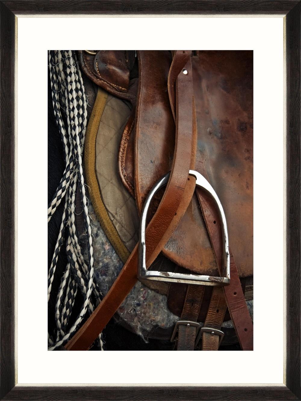 Tablou Framed Art Equitation III