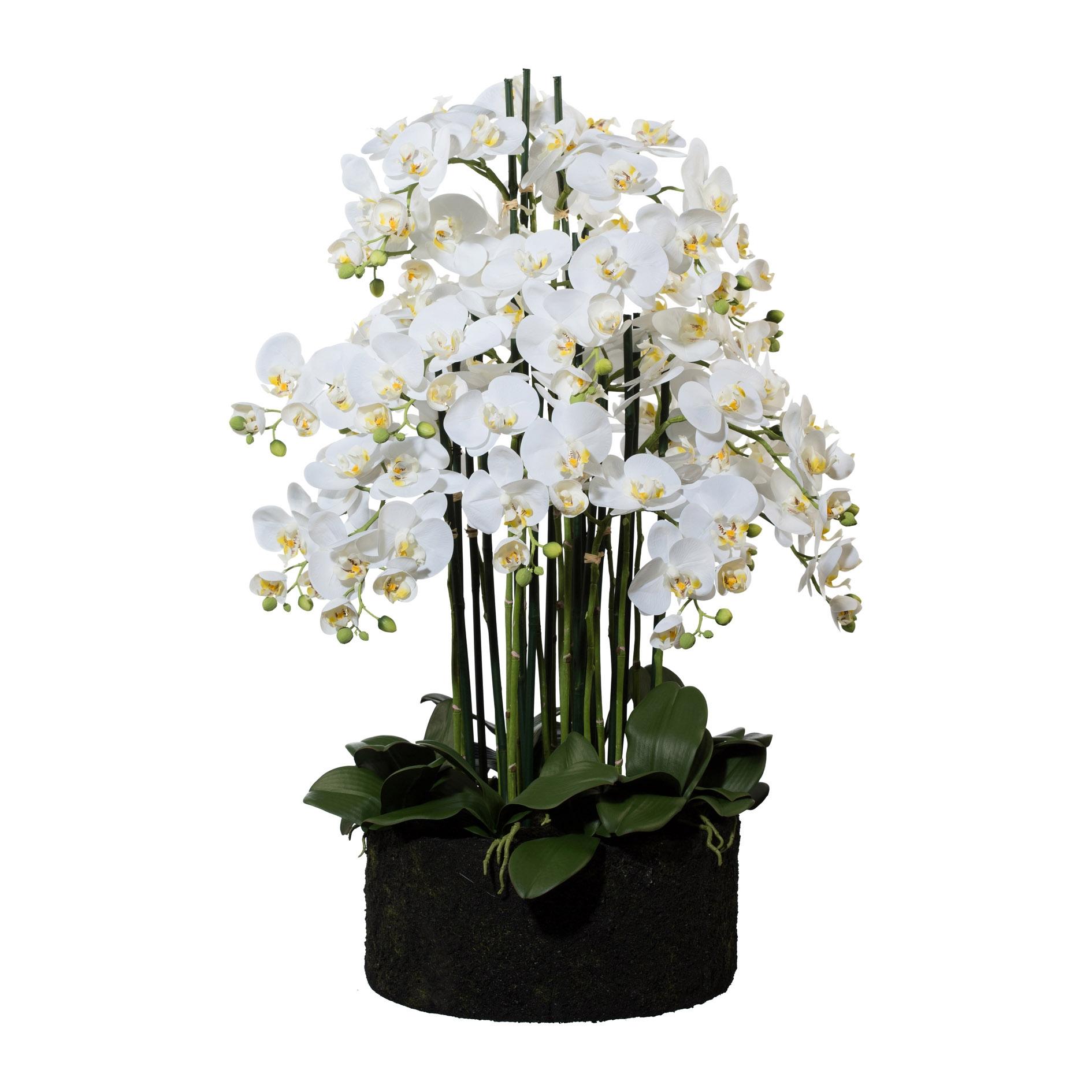 Floare Artificiala Orhidee Phalenopsis Alb