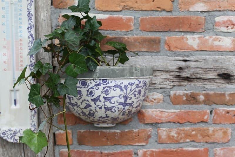 Ghiveci pentru perete, din ceramica, Aged Gri / Albastru, L27,5xl11,9xH17,5 cm somproduct.ro
