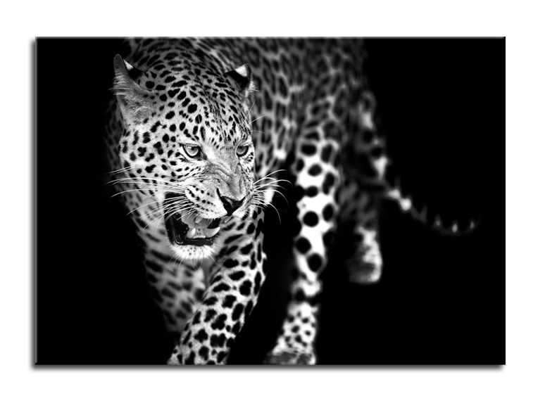 Tablou Sticla Glasspik Leopard I 70x100 cm