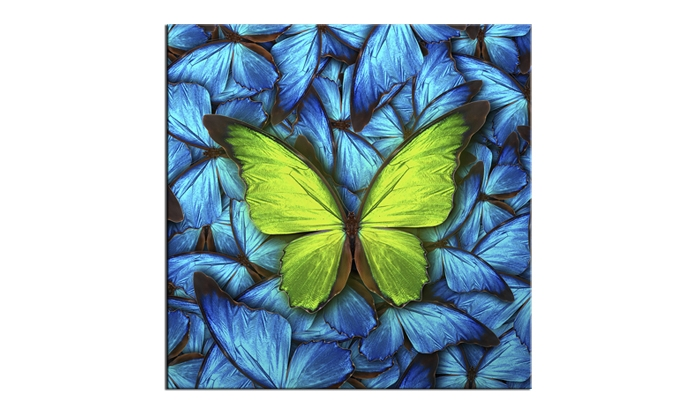 Tablou Sticla Glasspik Butterfly Blue 20x20 cm