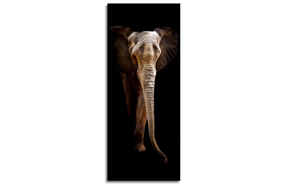 Tablou Sticla Glasspik Elephant II 50x125 cm