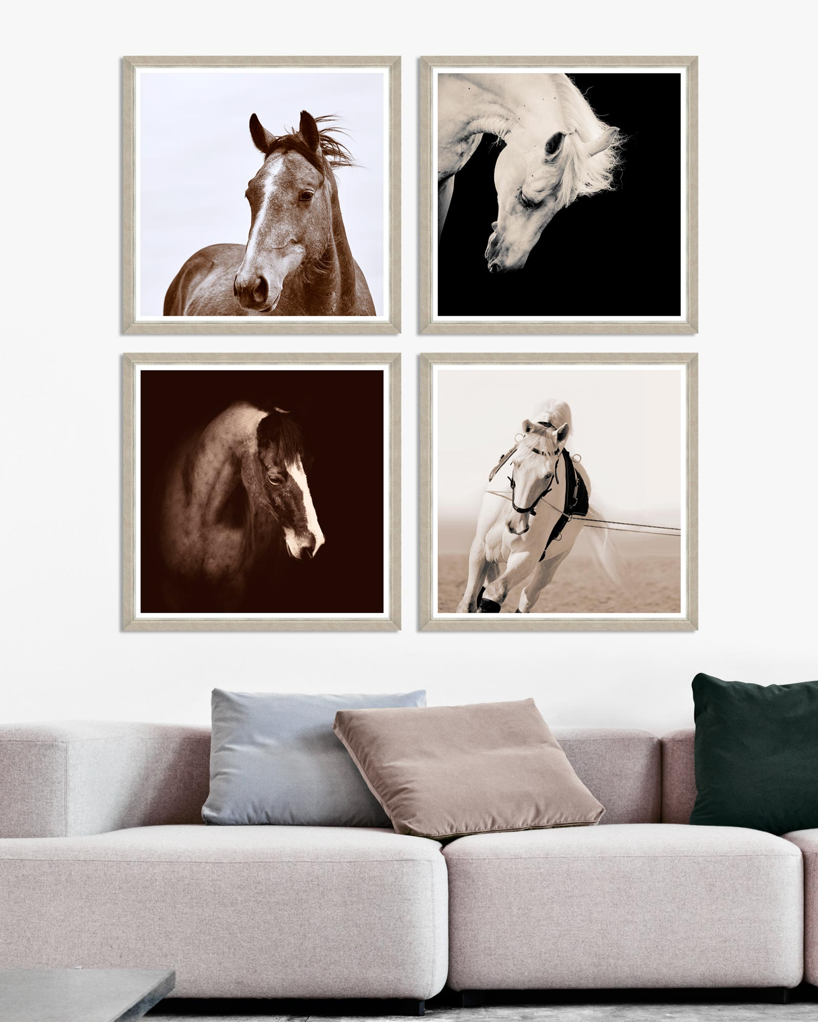 Tablou 4 piese Framed Art Horse Portraits