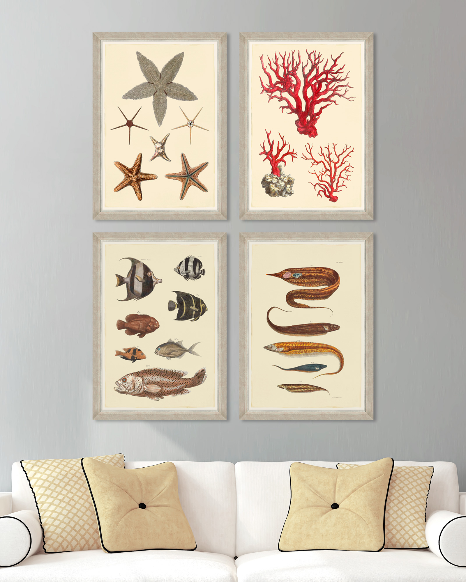 Tablou 4 piese Framed Art Marine Life Plates