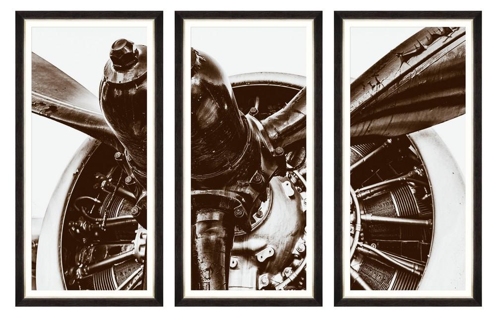 Tablou 3 piese Framed Art Old Bird-Tryptich