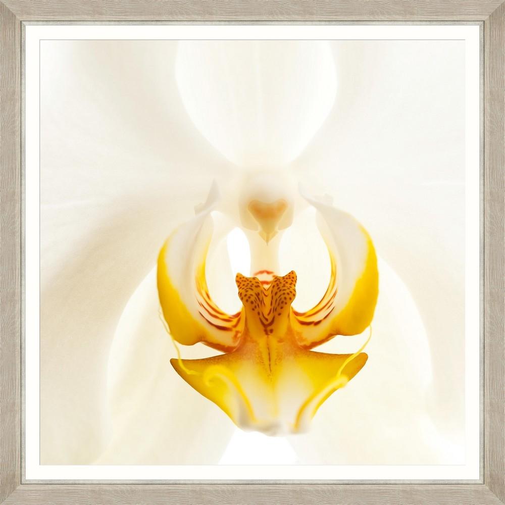 Tablou Framed Art Orchid Bloom II imagine