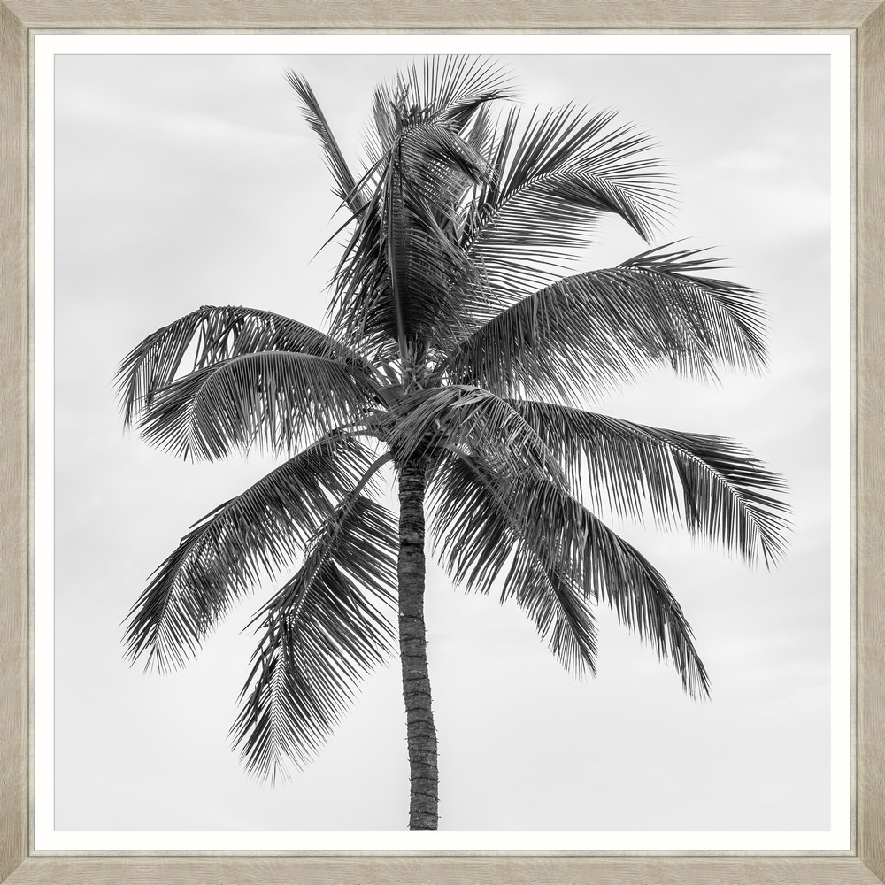 Tablou Framed Art Palm Splendor II