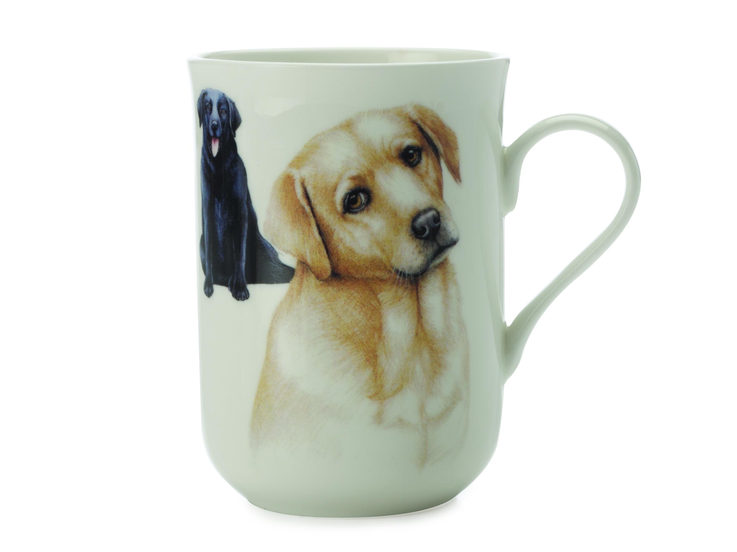 Cana Labrador, Pets, 300 ml title=Cana Labrador, Pets, 300 ml