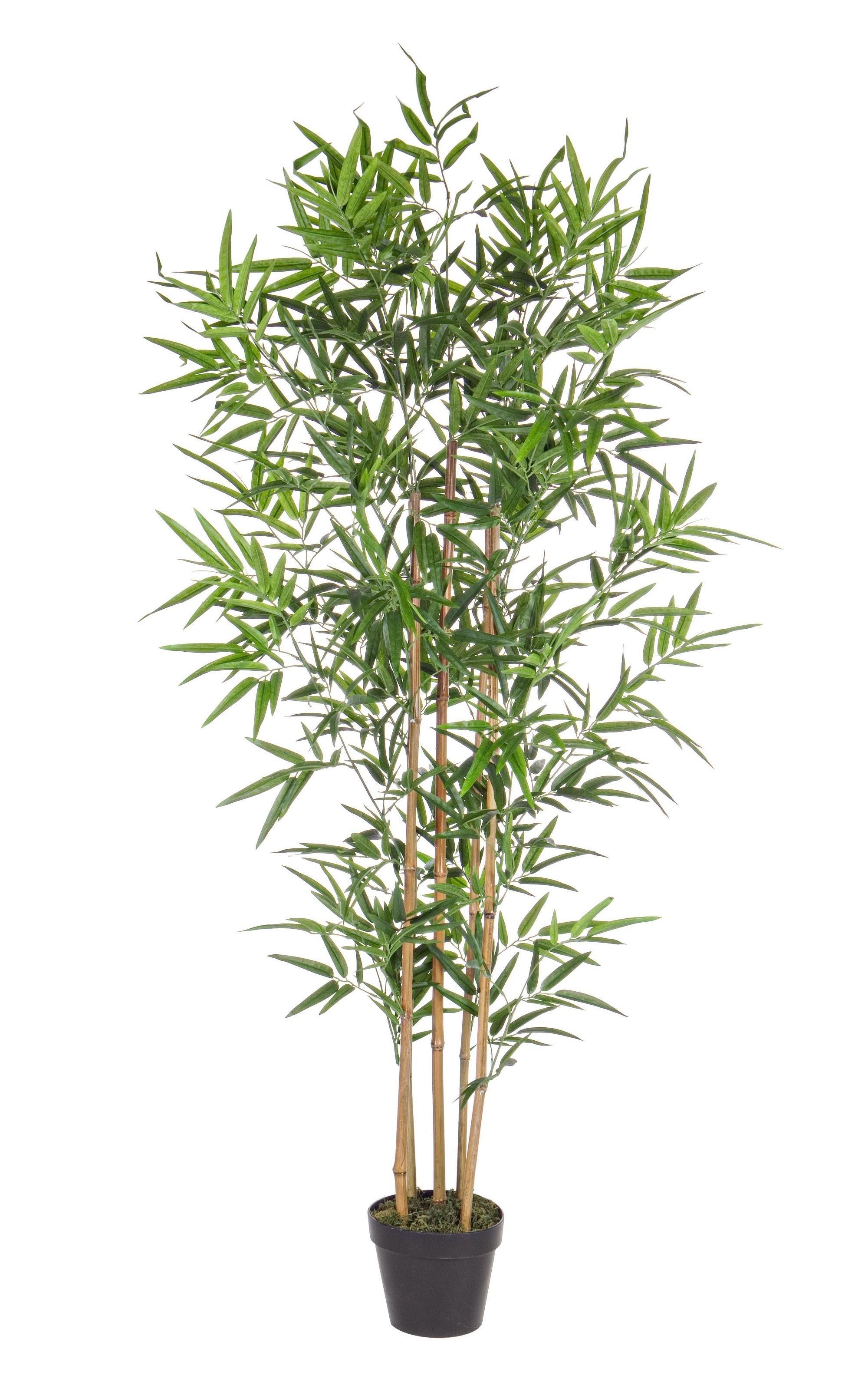 Planta artificiala Bamboo, H155 cm imagine