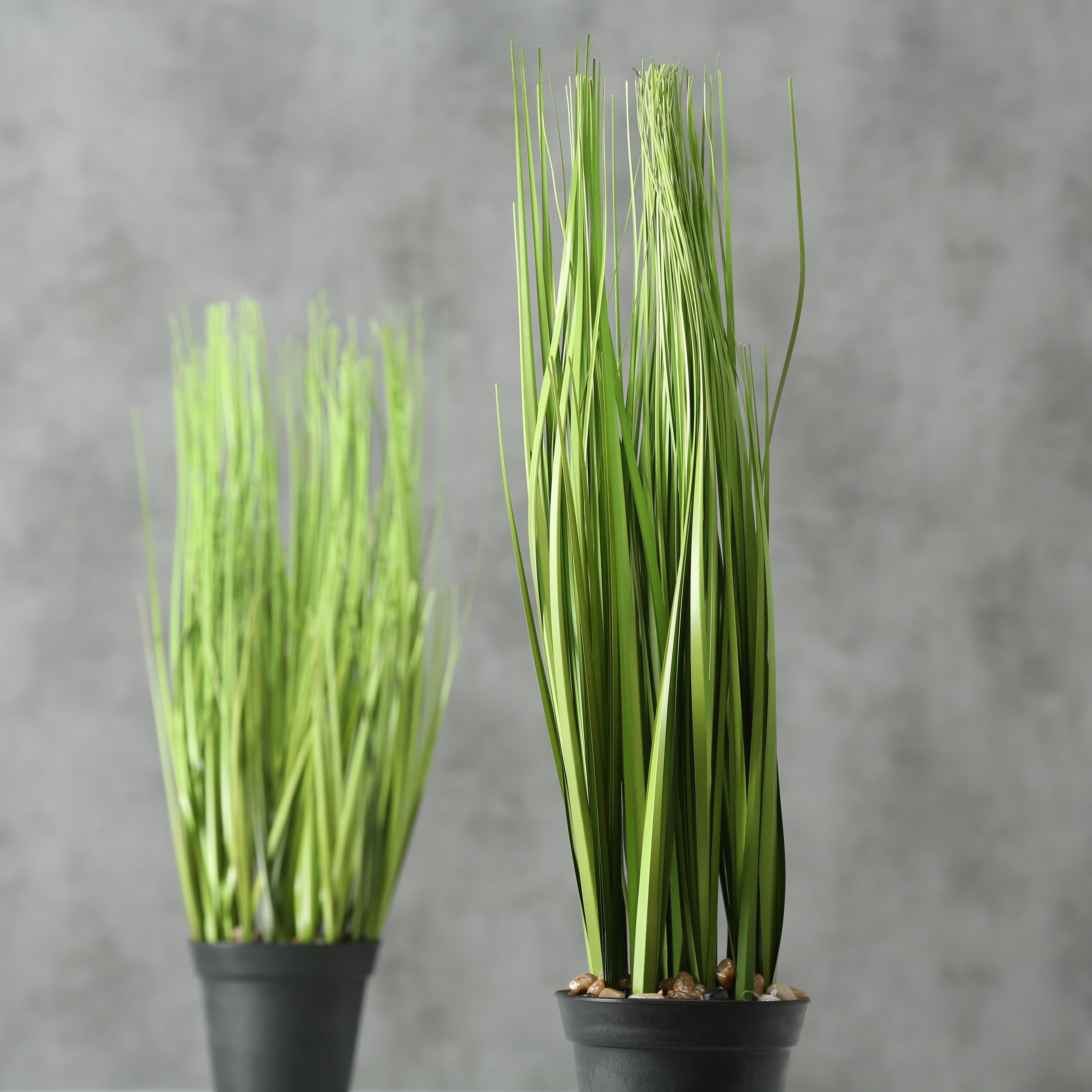Planta artificiala in ghiveci Grass Verde / Negru, Modele Asortate, H54 cm