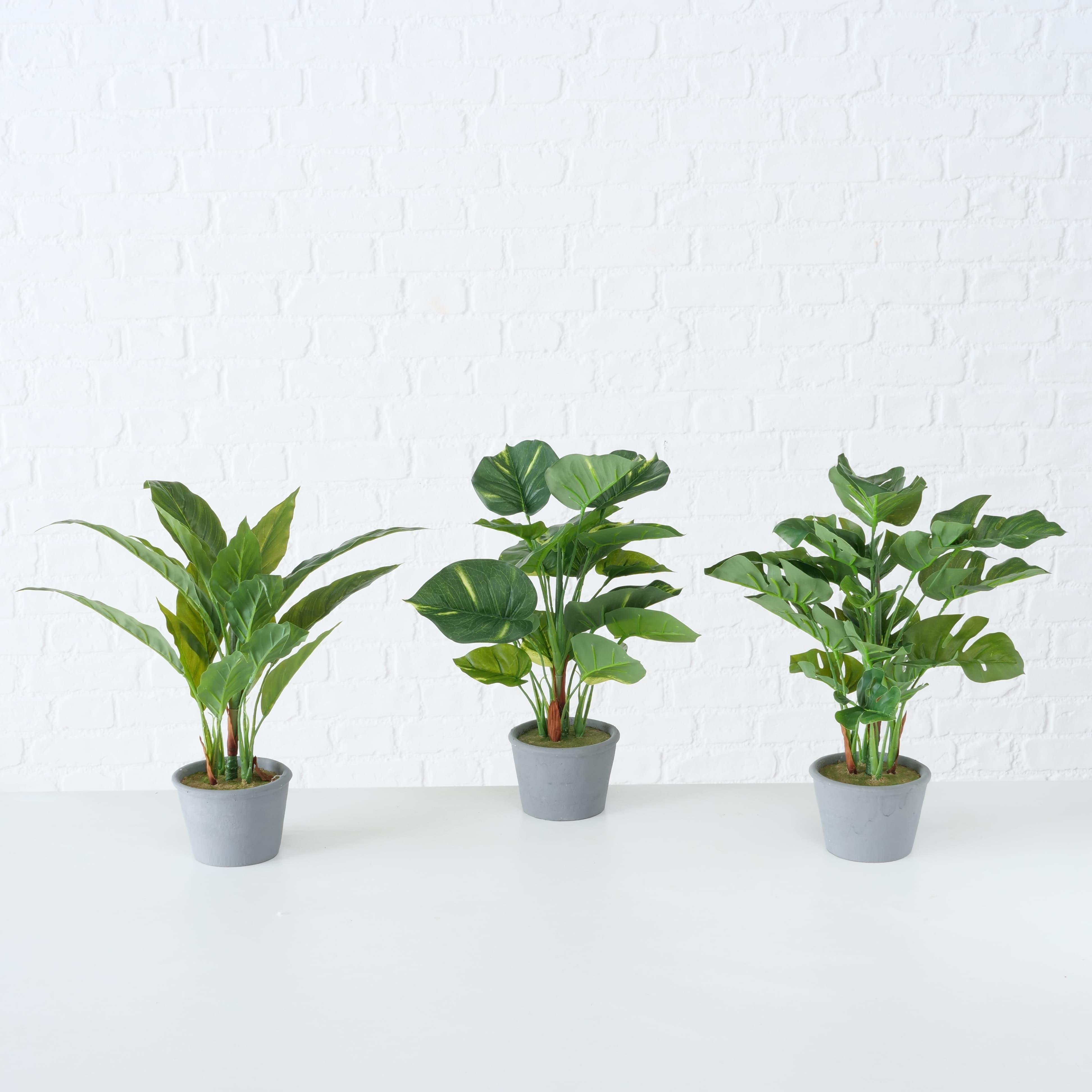 Planta artificiala in ghiveci Monstera Verde / Gri, Modele Asortate, H35 cm