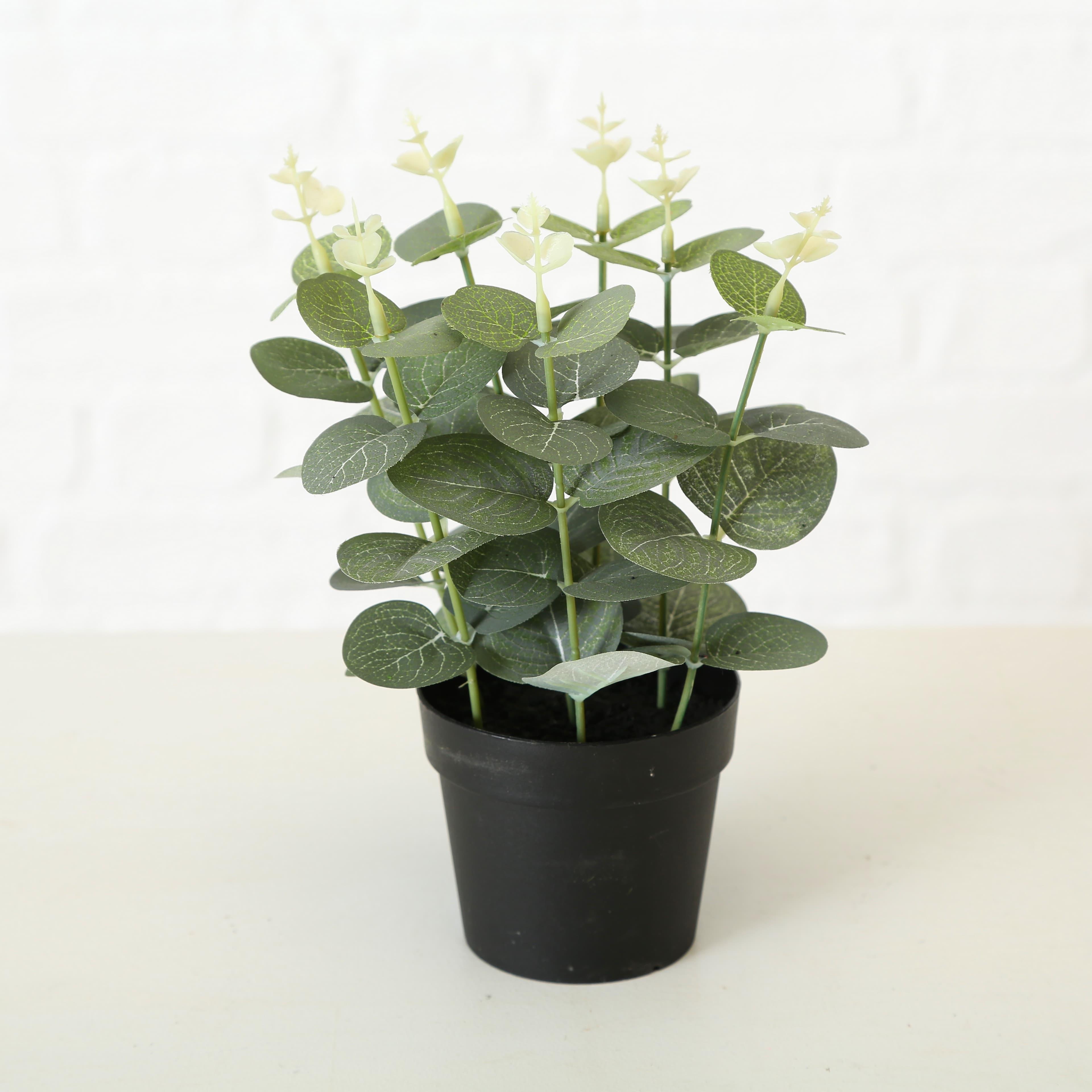 Planta artificiala in ghiveci Monstera Verde / Negru, Modele Asortate, H23 cm