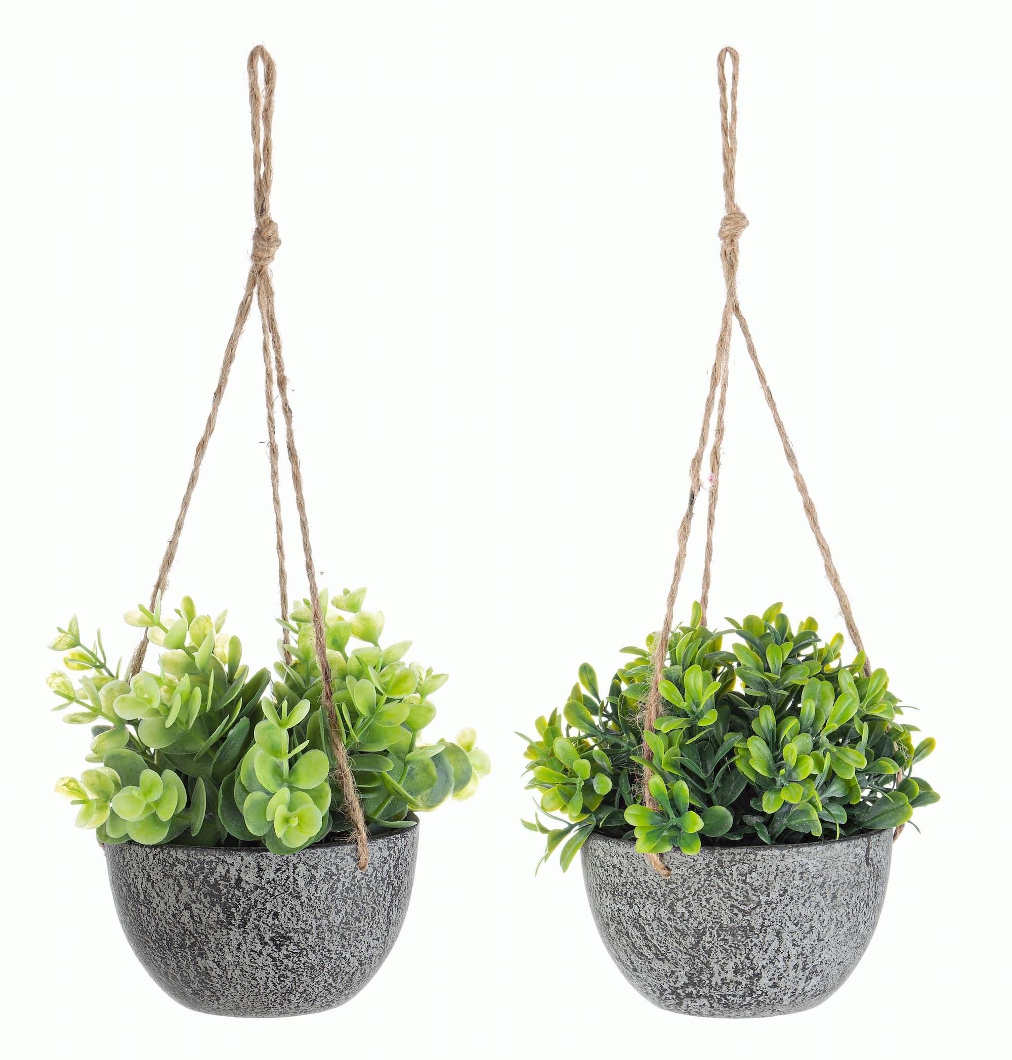 Planta artificiala in ghiveci suspendabil Pumila Verde / Gri, Modele Asortate, Ø10,5xH13 cm