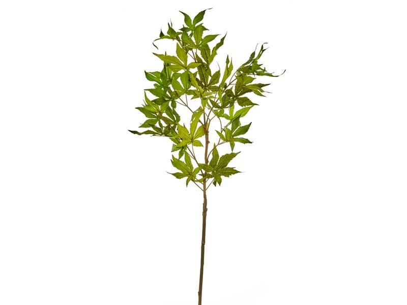 Ramura decorativa artificiala Logan Verde, H30 cm imagine