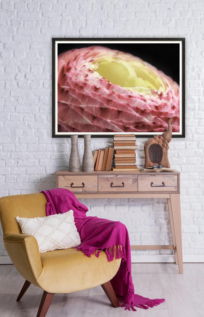 Tablou Framed Art Ranunculus