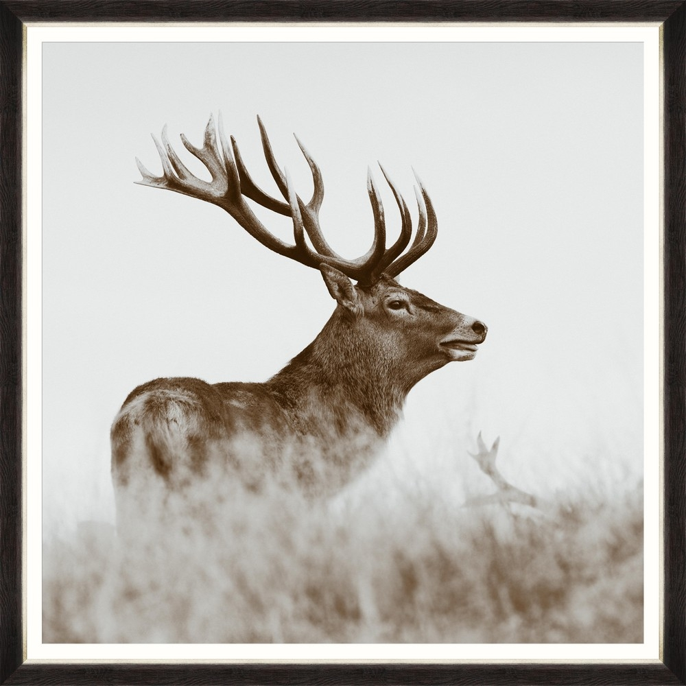 Tablou Framed Art Red Deer