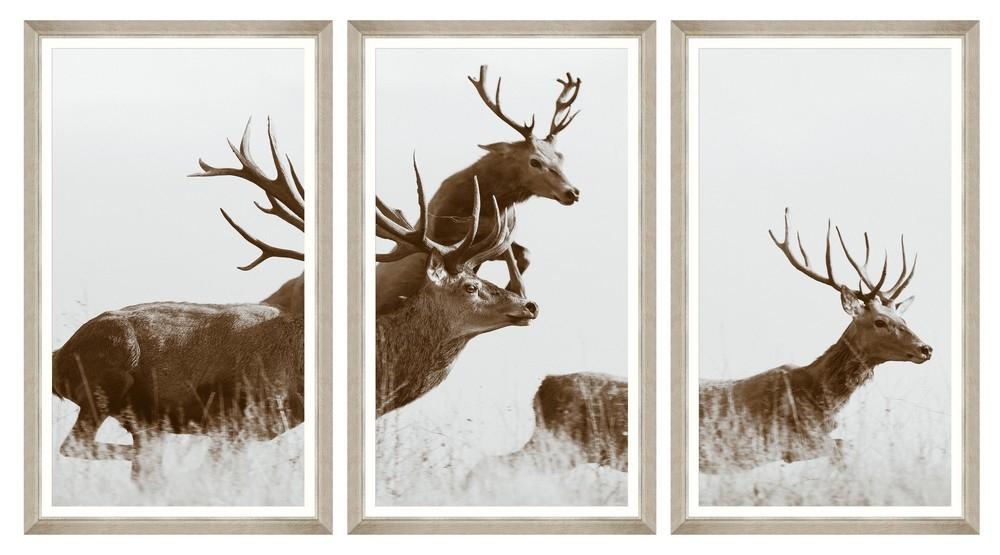 Tablou 3 piese Framed Art Running Wild imagine