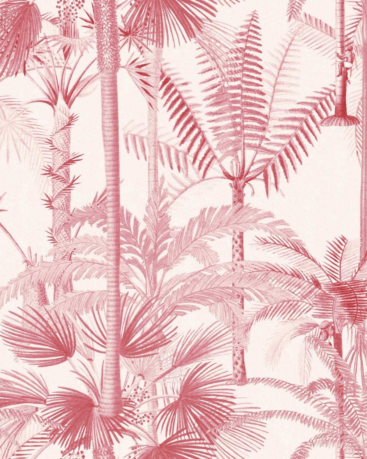 Poza Set Role Tapet Imprimat Digital Palmera Cubana Pink