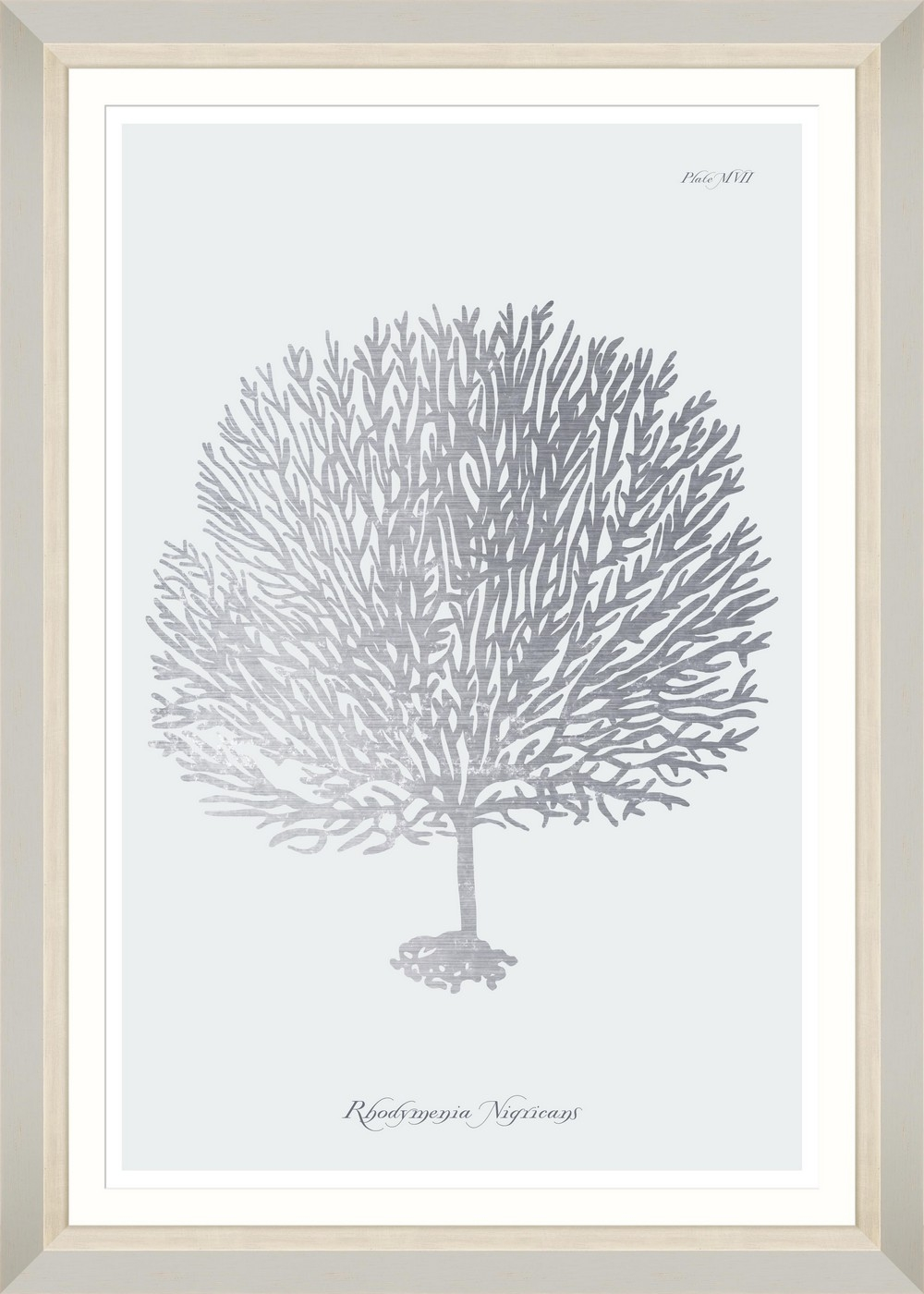 Tablou Framed Art Silver Coral III imagine