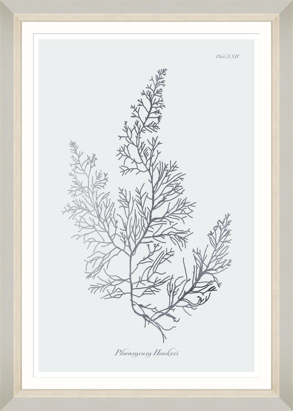 Tablou Framed Art Silver Coral IV