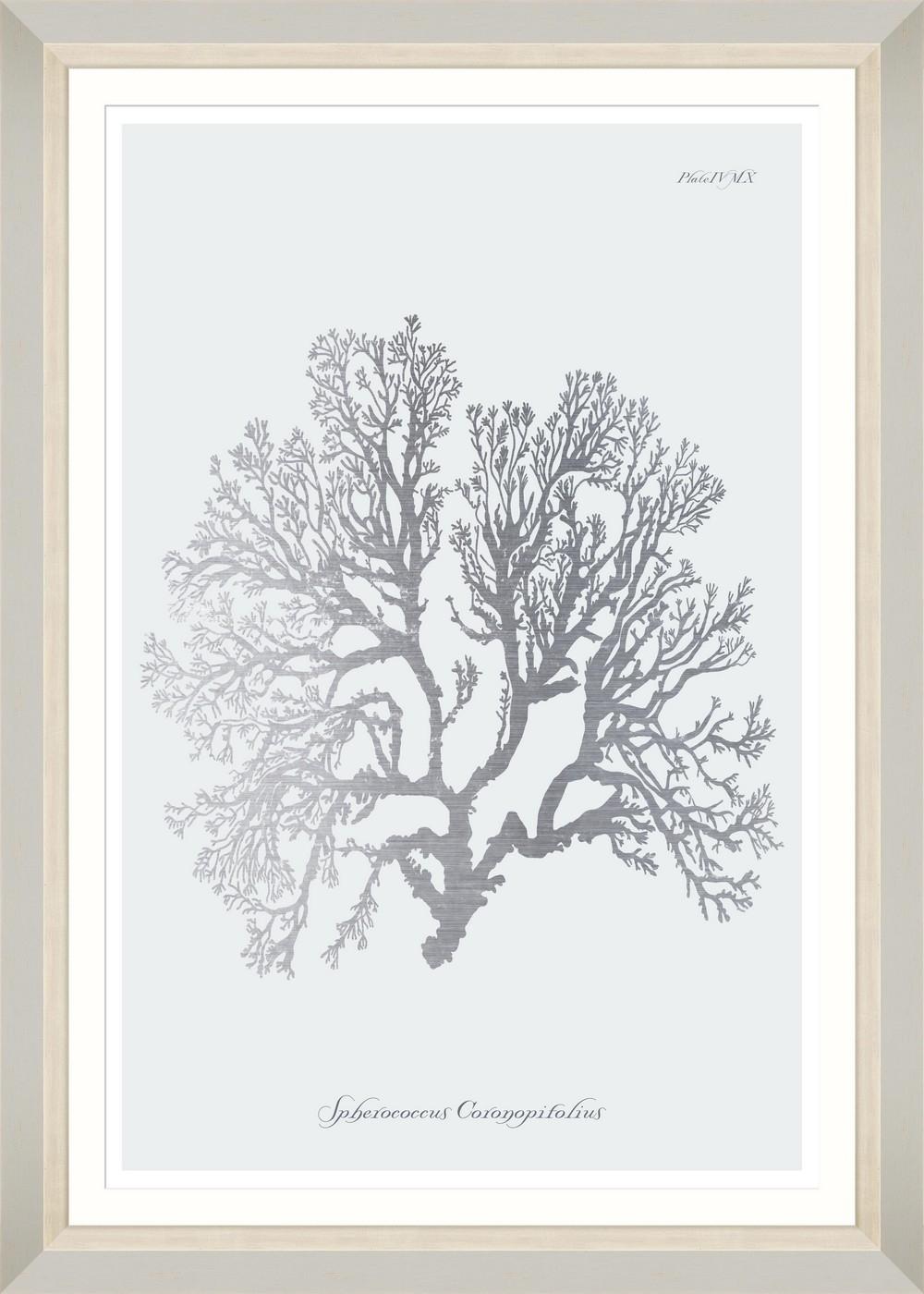 Tablou Framed Art Silver Coral VI