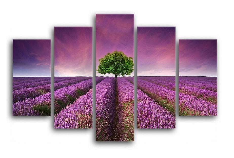 Tablou 5 piese Canvas Lawenda 100x150 cm