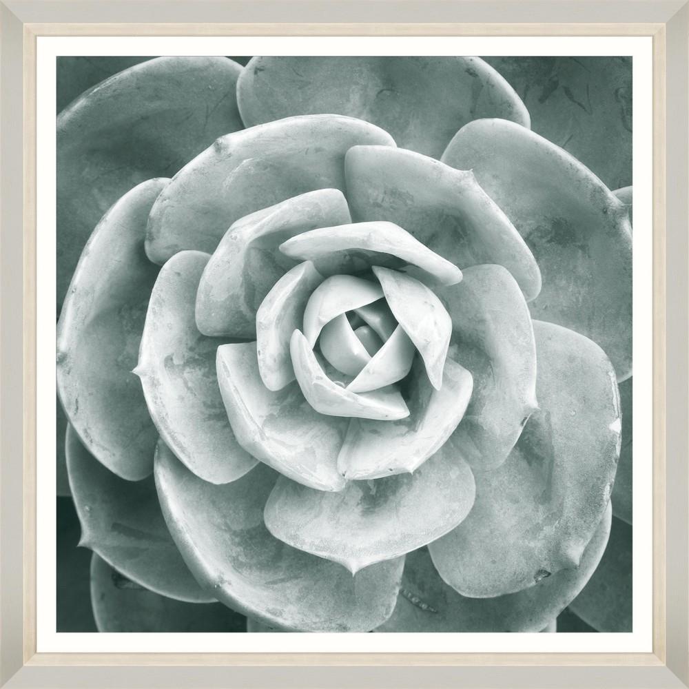 Tablou Framed Art Succulent II