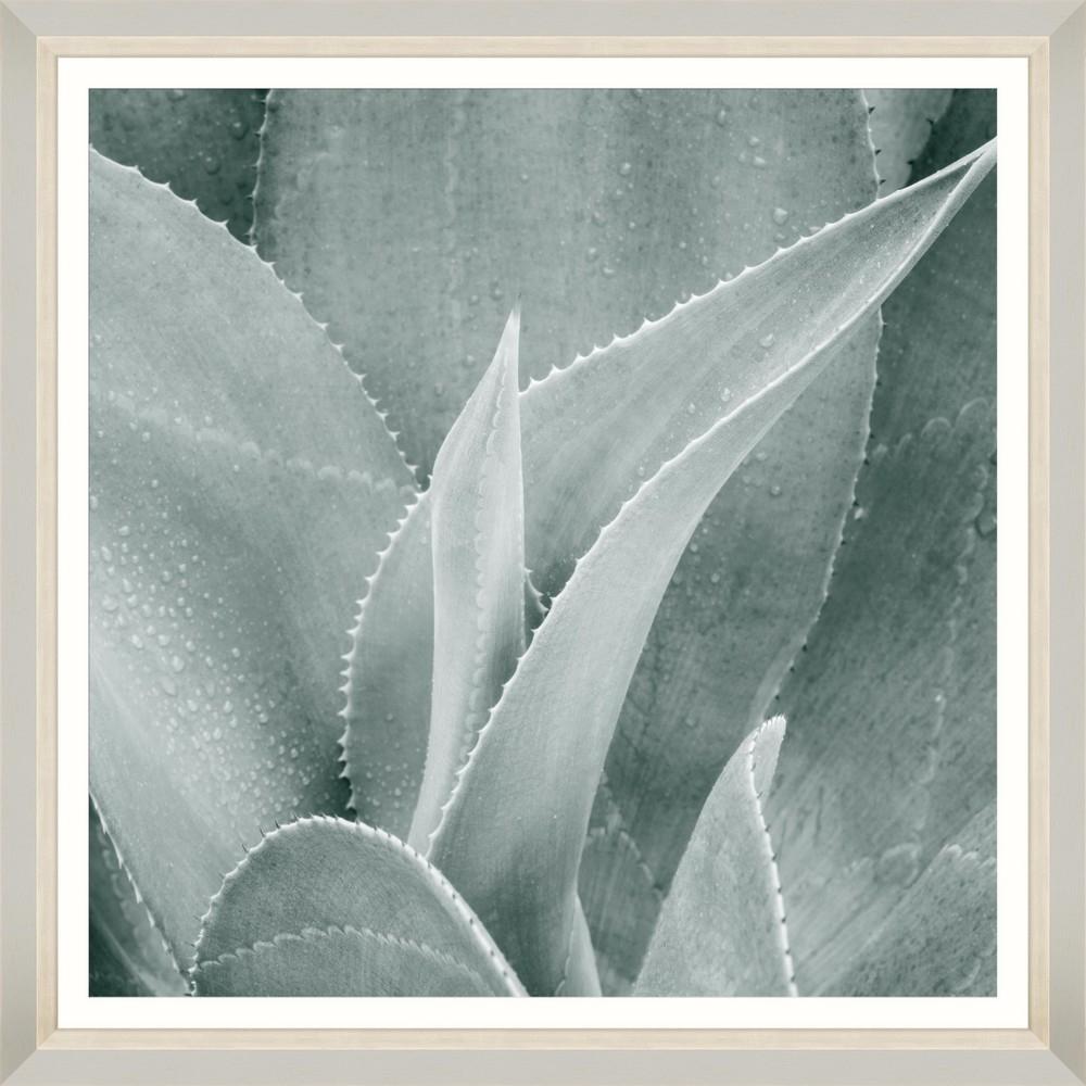 Tablou Framed Art Succulent V