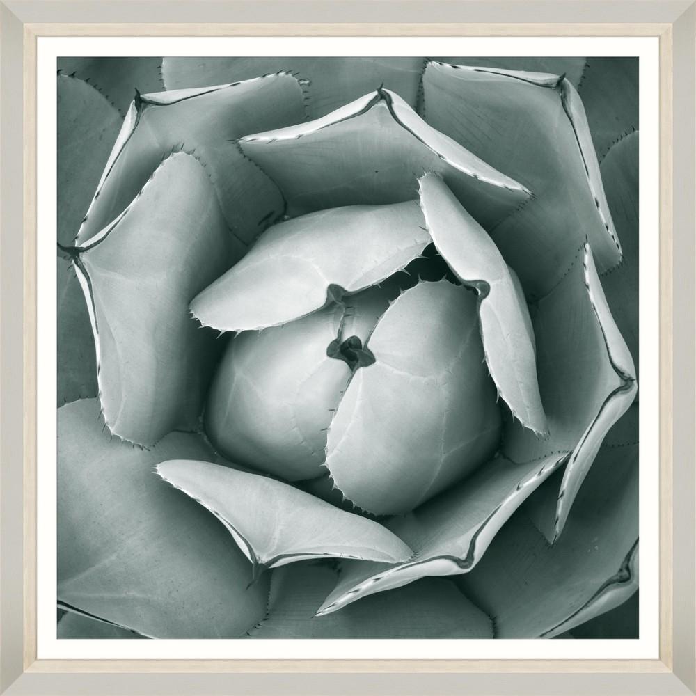 Tablou Framed Art Succulent VI