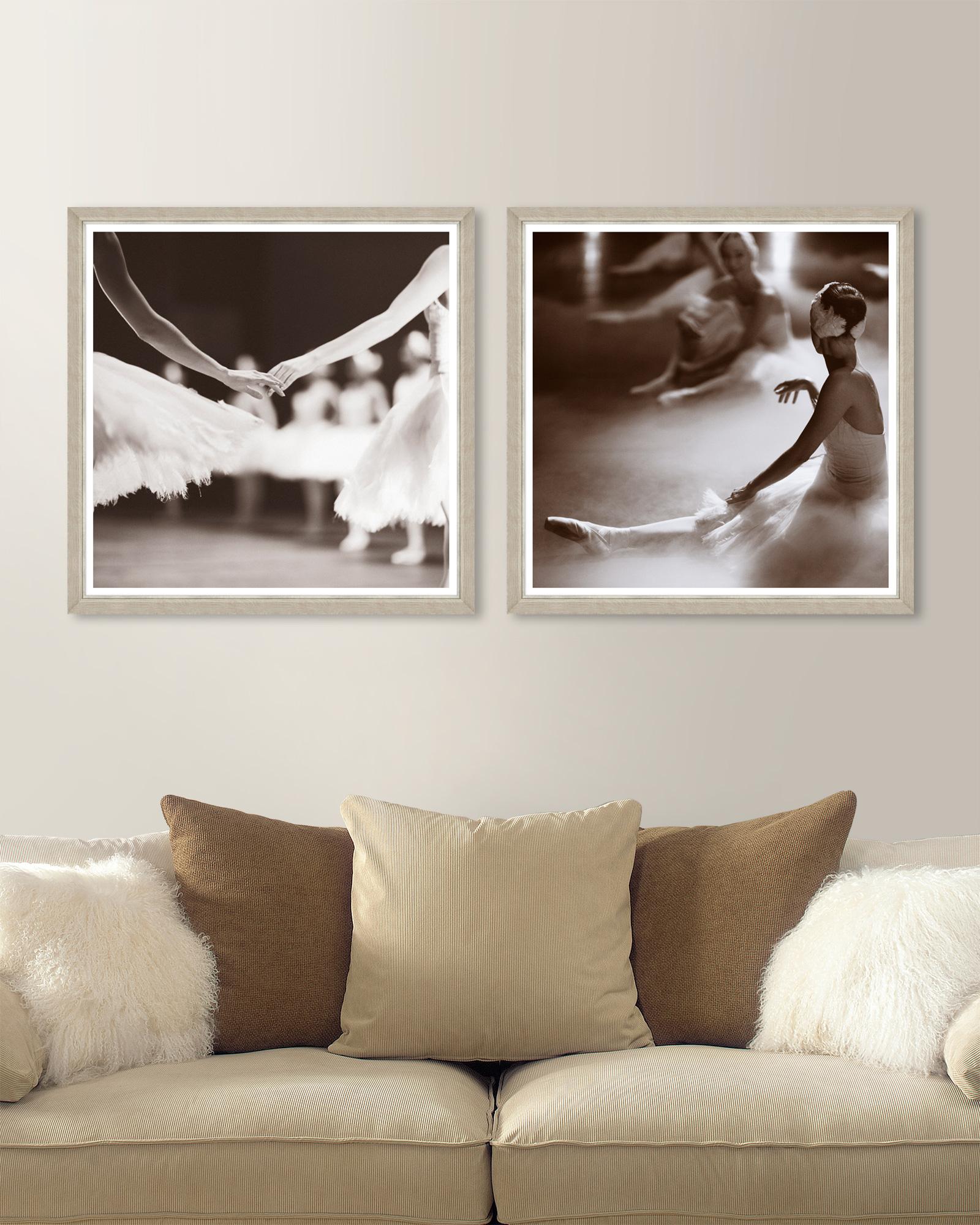 Tablou 2 piese Framed Art Swan Lake