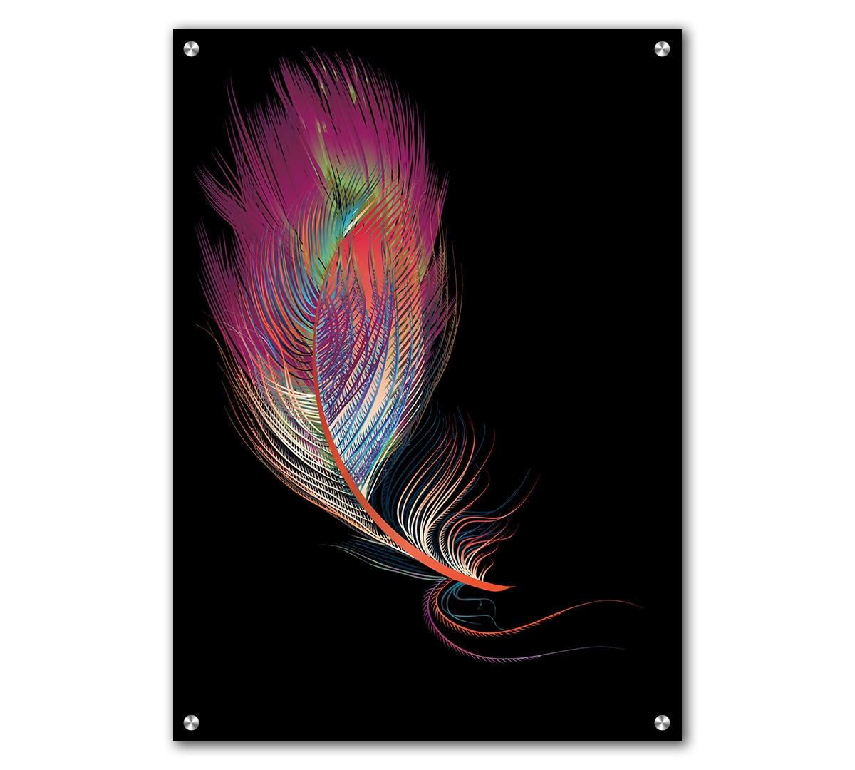 Tablou Acrilic Black Dream Feather