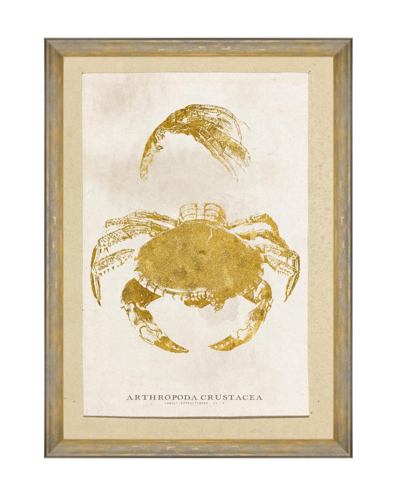 Tablou Framed Art Caribbean Sea Life - Arthropoda Crustacea, 50 x 70 cm imagine