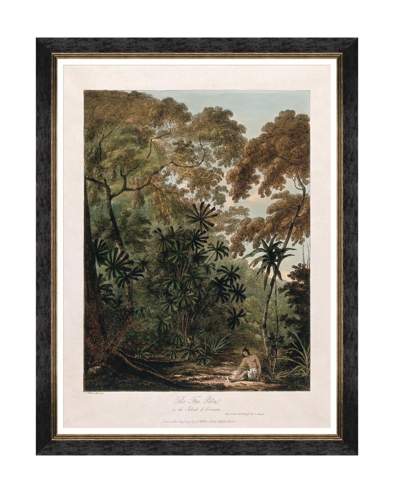 Tablou Framed Art Trees Of Krakatoa - The Fan Palm, 60 x 80 cm imagine