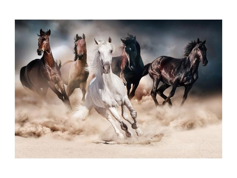 Tablou Sticla Horses, 120 x 80 cm imagine
