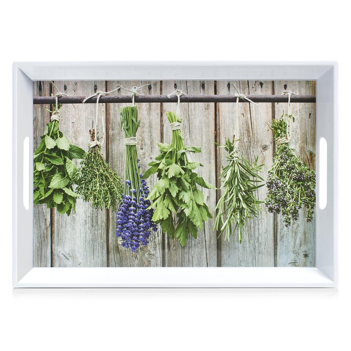 Tava pentru servire Herbs, Melamina Multicolor, l50xA35xH5 cm imagine