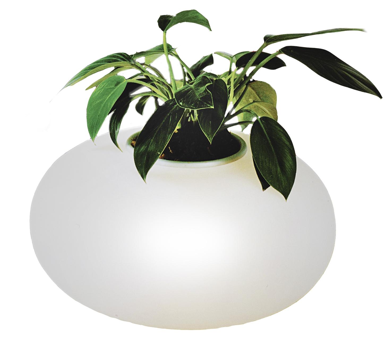 Veioza Flora Alb, AZ0185