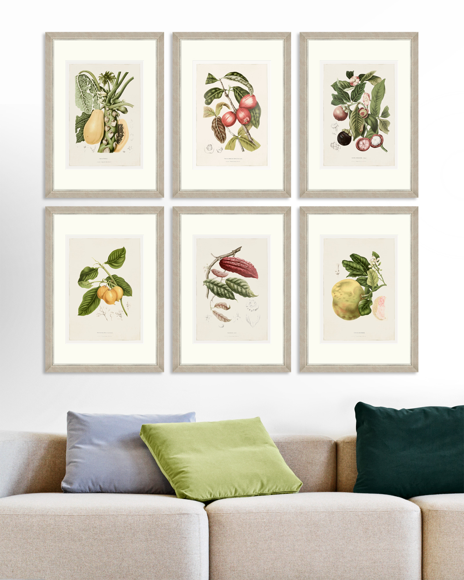 Tablou 6 piese Framed Art Vintage Fruit Plates imagine